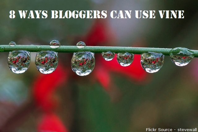 Bloggers Can Use Vine
