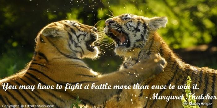 Win Battle